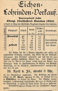 17041917 eichenrinde