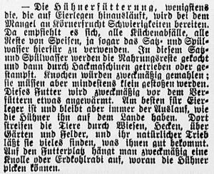 19150319_Hühnerfütterung_491