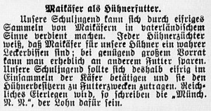 19150509_Maikäfer_536