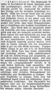 19150728_Ziegenzucht_31