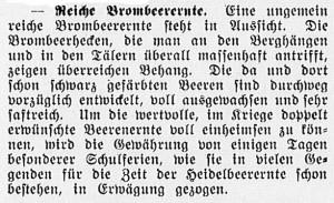 19150813_Brombeerernte_46