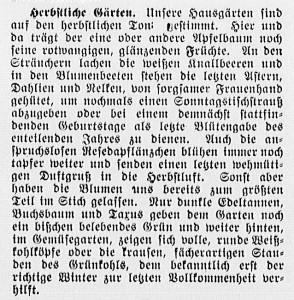 19150926_Herbst_88