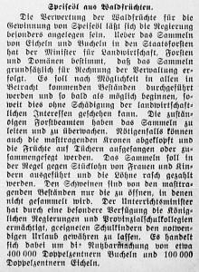 19151008_Öl_101