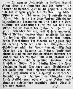 19151124_Huflattich_147