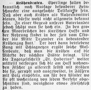 19151217_Krähenbraten_173