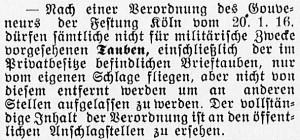 19160128_Tauben_211