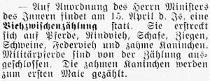 19160409_Viehzählung_278