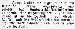 19160430_Nußbäume_297