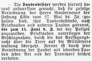 19160614_Tauben_338