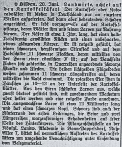 1916 06 20