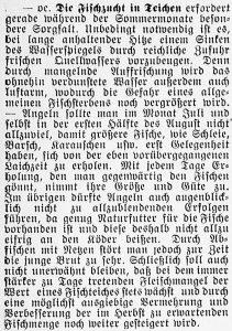 19160716_Fischzucht_366