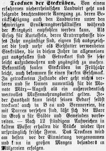 19161124_steckrueben_486