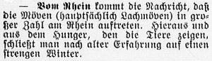 19161126_moewen_488