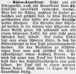 19170218_ruebenkraut_559